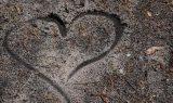 https://p0.pikist.com/photos/338/493/desktop-pattern-abstract-dirty-nature-art-simple-love-peace.jpg